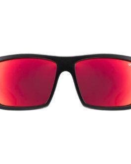 Uvex okulary Lifestyle LGL 29
